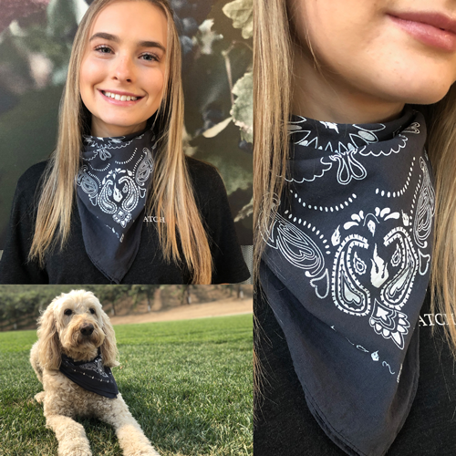 Product Image for Matchbook Bandana